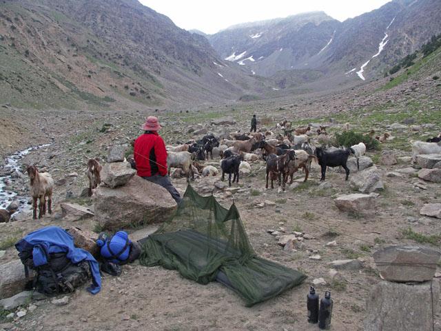 pict0092-trek-camp-1